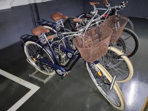 Montar en bicicleta en Buba House o alrededores