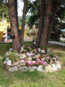 Κήπος έξω από το Maistrali Studios