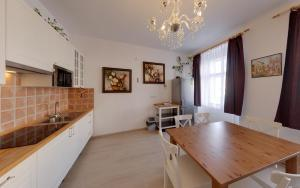 Kuchyň nebo kuchyňský kout v ubytování Apartmány Tábor