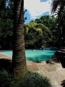 The swimming pool at or near Africa's Eden Guesthouse