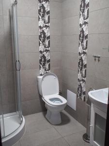 Łazienka w obiekcie Noclegi Pod Brzozami
