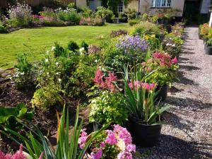 A garden outside Brambles Bed and Breakfast