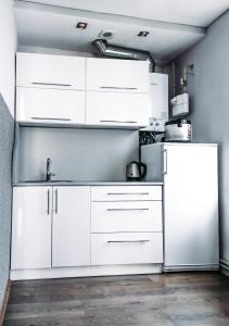 Кухня или мини-кухня в Suvorov's Apartment