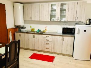 Kuchyň nebo kuchyňský kout v ubytování Chata pod Lysou Horou