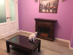 Pet or pets staying with guests at Apartment on Kraynova 3A