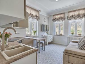 Kuchyň nebo kuchyňský kout v ubytování Apart House Plesia2