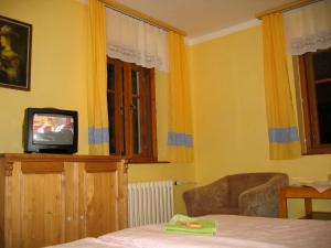 A television and/or entertainment center at Penzion Nikola