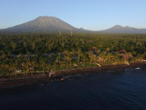 A bird's-eye view of Relax Bali Dive & SPA Resort