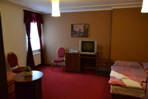 TV a/nebo společenská místnost v ubytování Hotel Černý Orel Žatec