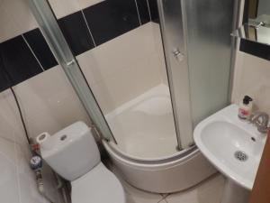 A bathroom at Studio Darvina 20