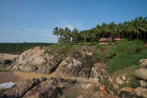 Natural landscape near the resort