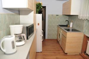 Kuchnia lub aneks kuchenny w obiekcie Luna Apart Gdańsk