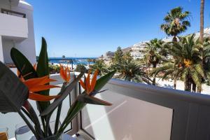 Un balcón o terraza de Apartamentos Miami Gran Canaria