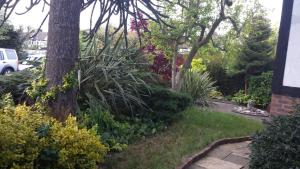 A garden outside 63 Aragon Road