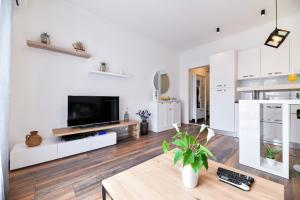 A television and/or entertainment centre at Serenity Apartment
