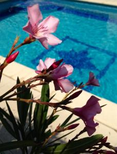 The swimming pool at or near L'Autre Maison