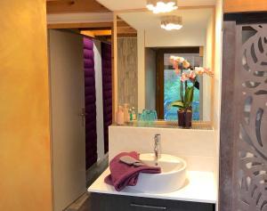 A bathroom at Chambres d'hôtes Artist'au Chat