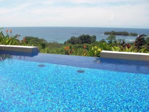 The swimming pool at or near Red Frog Beach Island Resort