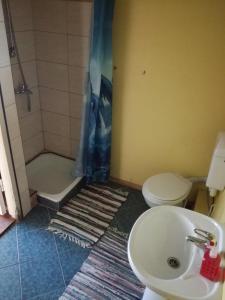 A bathroom at Lauku viesu māja Bajāri