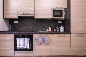Kuchyň nebo kuchyňský kout v ubytování Rezidence Rumunská