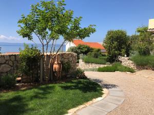 A garden outside Sunshine Residence