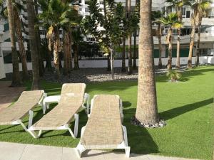 Jardín al aire libre en Playa del Ingles 540