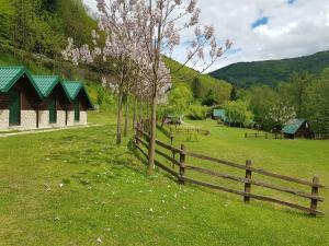 Vrt ispred objekta Camping Drina
