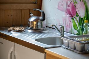 Kuchyň nebo kuchyňský kout v ubytování Apartment Perić