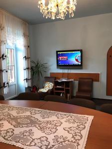 Un televizor și/sau centru de divertisment la Vila Sangeorz-Bai IOANA