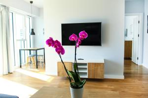 A television and/or entertainment center at Apartamenty I.M.A Towarowa