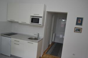 Kuhinja ili čajna kuhinja u objektu Apartment Harmony