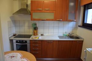 Kuhinja oz. manjša kuhinja v nastanitvi Rooms Ribnikar