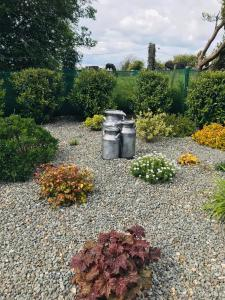A garden outside Clonakilty Accommodation An Úllórd Getways