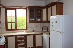 A kitchen or kitchenette at Green Peace