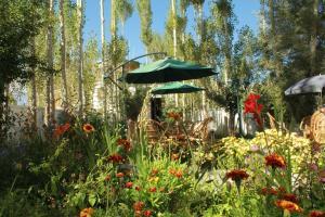 Jardin de l'établissement Hotel Ladakh Greens