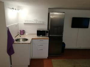 Kuchyň nebo kuchyňský kout v ubytování Ateliér sklep