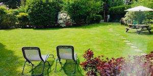 A garden outside Le Bois Dormant ⭐️
