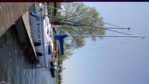 Inne aktywności na łodzi lub w pobliżu