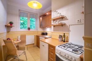 Kuchnia lub aneks kuchenny w obiekcie Radunia Canal Apartment