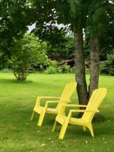 A garden outside Rogers Island Getaway