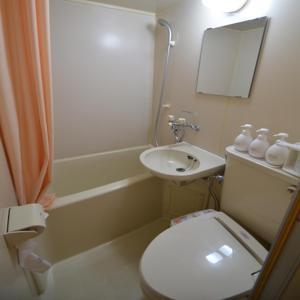 A bathroom at Select Inn Nagoya Iwakura Eki-mae