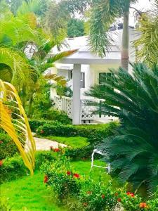 Jardín al aire libre en Daymond Blue Tropical Lodge