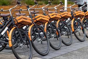 Radfahren an der Unterkunft Bilderberg Garden Hotel oder in der Nähe