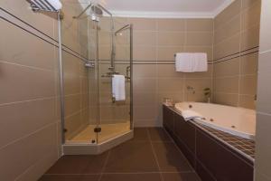 A bathroom at Sunbird Capital