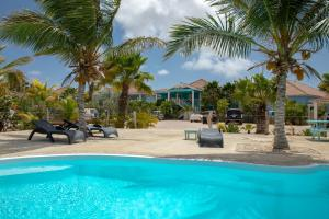 The swimming pool at or close to Ocean Blue Bonaire