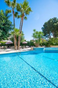 The swimming pool at or near Apartamentos Flor los Almendros