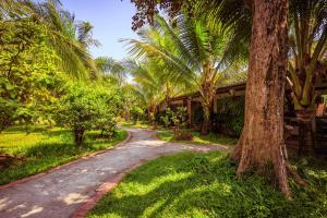 Сад в Sen Viet Phu Quoc Resort, Sport & Spa