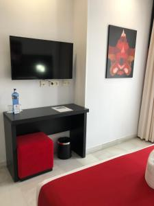 A television and/or entertainment center at Hotel Del Pintor