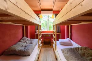 A bunk bed or bunk beds in a room at Tani9 Backpackers Osaka