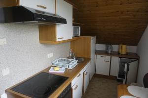 Küche/Küchenzeile in der Unterkunft Pension-Ferienwohnung Rotar